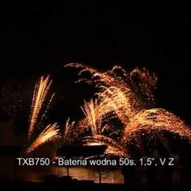 BATERIA WODNA TXB750