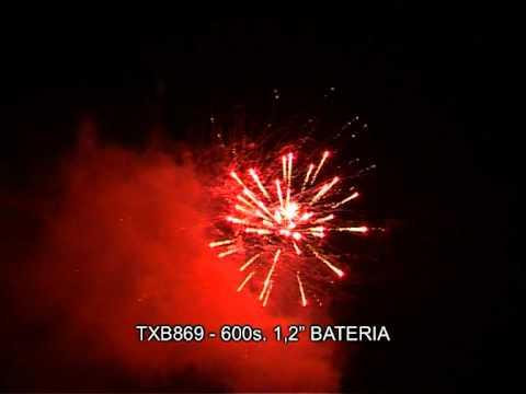 TXB869 BATERIA 600S 1 2