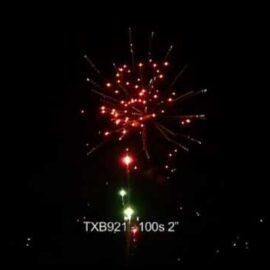 """TXB921 BATERIA 100S 2"""""""