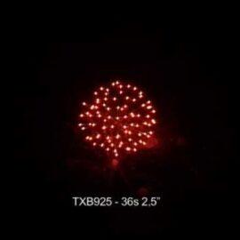 """TXB925 BATERIA 36S 2.5"""""""