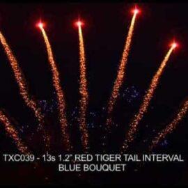 """TXC039 JEDNORZĘDÓWKA 13S 1.2"""""""