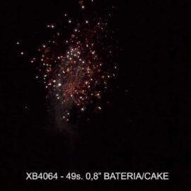 """XB4064 BATERIA 49S 0.8"""""""