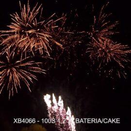 """XB4066 BATERIA 100S 1.2"""" V"""