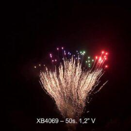 """XB4069 BATERIA 50S 1.2"""" V"""