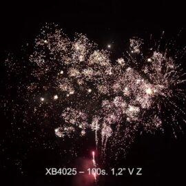 """XB4025 BATERIA  100S 1.2"""" V"""