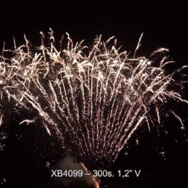 """XB4099 BATERIA  300S 0.8"""" V"""