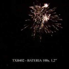 """TXB402 BATERIA 100S 1.2"""""""